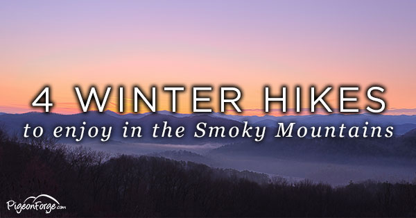 smoky mountain winter hikes
